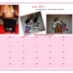 calendrier-xavbox-2013_Page_04